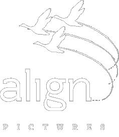 http://alignpictures.com/wp-content/themes/vortex